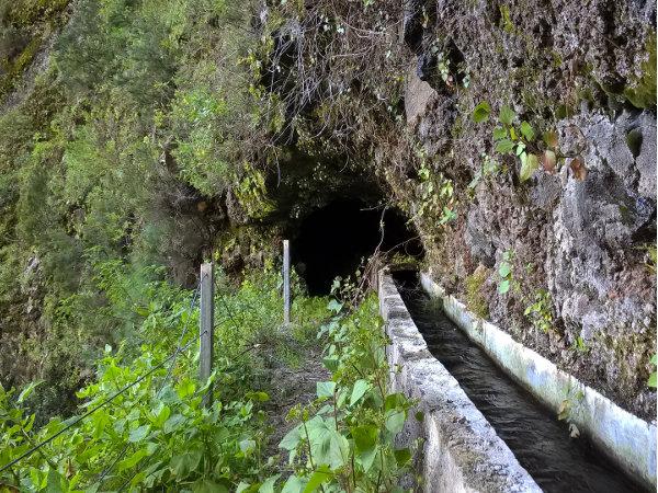 Wanderung inm Baranco Madera - La Palma
